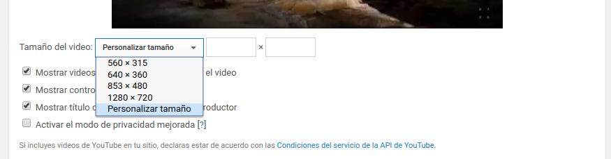 insertar-video-personalizado-youtube